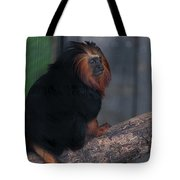 Golden Tamarin Tote Bag