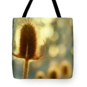 Golden Teasels Tote Bag