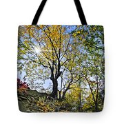 Golden Tree Tote Bag