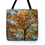 Golden Tree Lined Sky Tote Bag