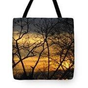 Golden Twilight 2 Tote Bag