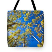 Golden View Looking Up Tote Bag