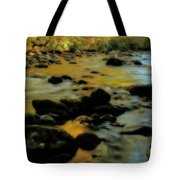 Golden View Of The Little River In Autumn Tote Bag by Dan Sproul