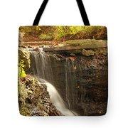 Golden Waterfall October In Ohio Tote Bag