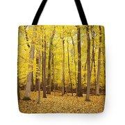 Golden Woods Tote Bag