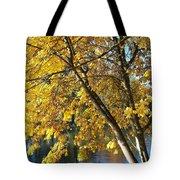 Golden Zen Tote Bag