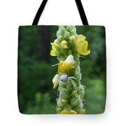 Goldenrod Crab Spider In Yellow Tote Bag