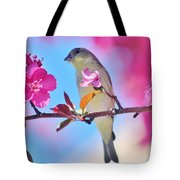 Goldfinch Behind Pink Blossoms 031015aaa Tote Bag