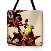 Goldfinch In Tree 031015a Tote Bag