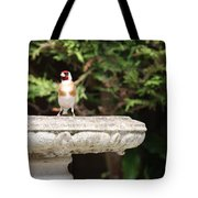 Goldfinch On Birdbath Tote Bag