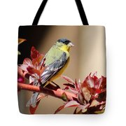 Goldfinch On Branch 031015aa Tote Bag