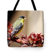 Goldfinch On Branch 031015aab Tote Bag
