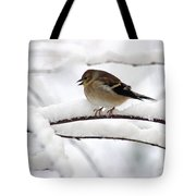 Goldfinch On Snowy Branches Tote Bag