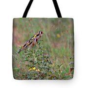 Goldfinches Tote Bag