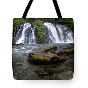 Goldrush Falls Tote Bag