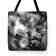 Gone To Seed Wild Aster Tote Bag