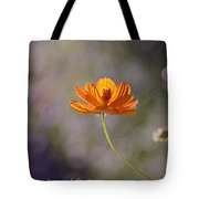 Good And Perfect Gifts Tote Bag