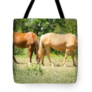 Marble Falls Texas In Good Grass Tote Bag