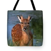 Good Grass Tote Bag