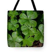Good Luck 2 Tote Bag