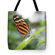 Good Morning Butterfly Tote Bag