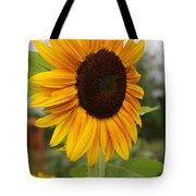 Good Morning Sunshine - Sunflower Tote Bag