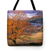 Good Morning Vermont Tote Bag