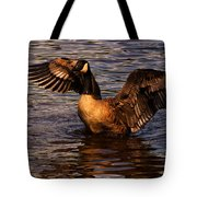 Goose Preparing For Flight Tote Bag