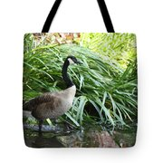 Goose Walking Back In For A Swim Tote Bag
