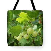 Gooseberries Tote Bag