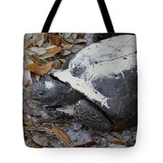 Gopher Tortoise Close Up Tote Bag