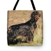 Gordon Setter Dog Tote Bag