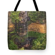 Wentworth Waterfall Tote Bag