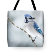 Gorgeous Blue Jay In The Snow Tote Bag