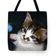 Gorgeous Christmas Kitten Tote Bag