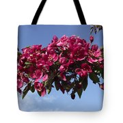 Gorgeous Hot Pink Tote Bag