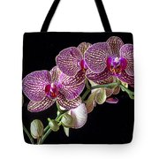 Gorgeous Orchids Tote Bag