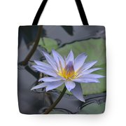 Gorgeous Pale Lavender Water Lily Tote Bag