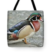Gorgeous Wood Duck Tote Bag
