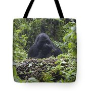 Gorilla In Our Midst Tote Bag