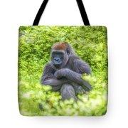 Gorilla Resting Tote Bag