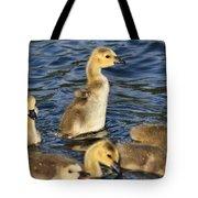 Gosling Showoff Tote Bag