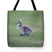 Gosling Stroll Tote Bag