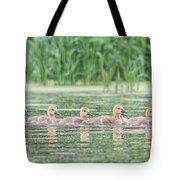 Goslings All In A Row Tote Bag