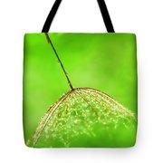 Gossamer Umbrellas Tote Bag