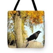 Three Ravens On A Gothic Graveyard Day Tote Bag