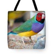 Gouldian Finch Tote Bag