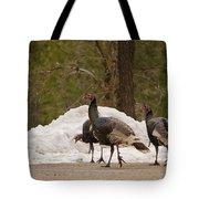 Gould's Wild Turkey Iv Tote Bag