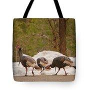 Gould's Wild Turkey V Tote Bag