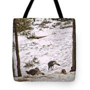 Gould's Wild Turkey Viii Tote Bag